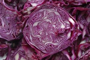 kosher red cabbage recipe